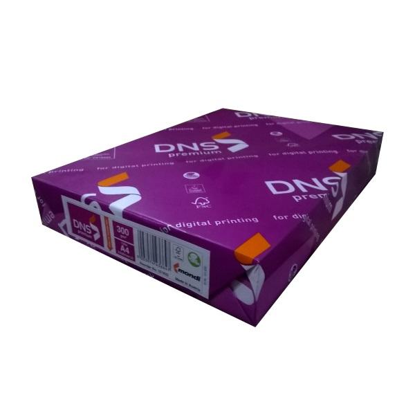 DNS premium